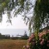 vistas-desde-la-casa-2